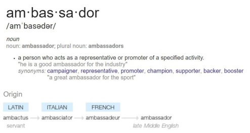 ambassador-definition